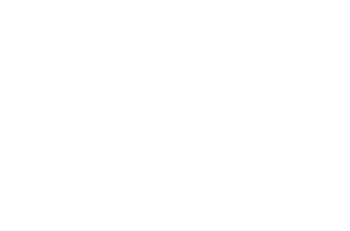 Team Currrier logo